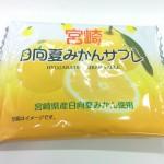 さわやかな夏みかんの香り 宮崎日向夏みかんサブレ